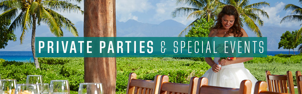 Private parties and special events text over image of bride by the beach